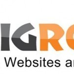 Big Rock Web Hosting Review and Feedback